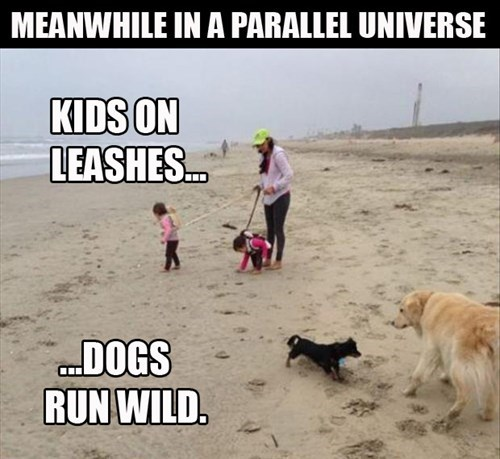 children dogs parallel universe