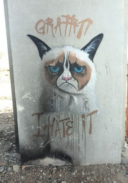 Cats,graffiti,Grumpy Cat