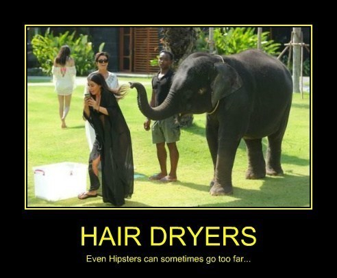 wtf elephant hair dryer funny - 8135357696