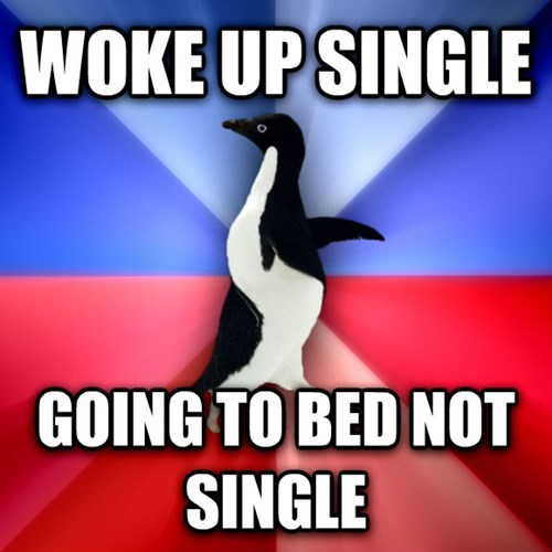 socially awkward penguin,socially awkward awesome penguin,socially awesome penguin