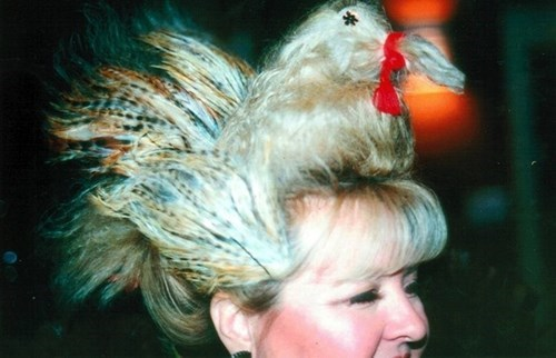 chicken,hairdo,hair,poorly dressed