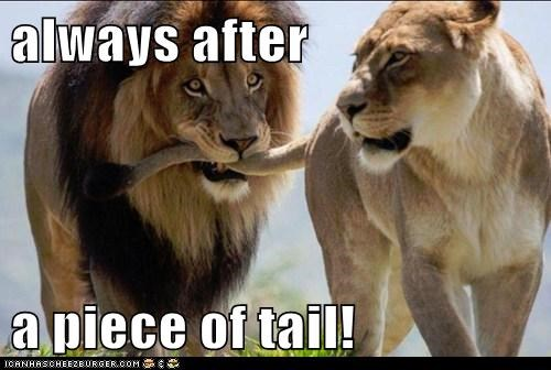 always after a piece of tail!