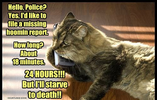 humans Cats funny police - 8136468480