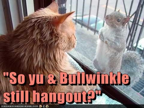 squirrels rocky and bullwinkle cartoons Cats - 8136642560