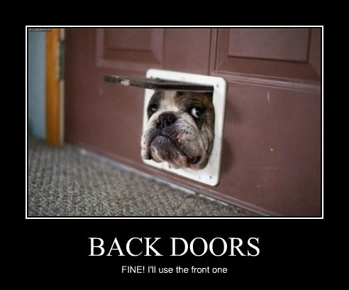 dogs fit backdoor funny - 8137385984