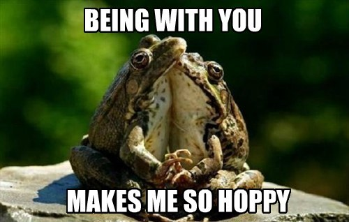 puns,cute,love,frogs
