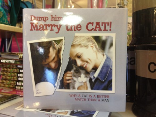 calendar Cats funny dumped grated dating - 8138232832