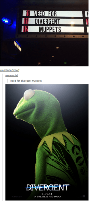muppets tumblr divergent movies response - 8138448640