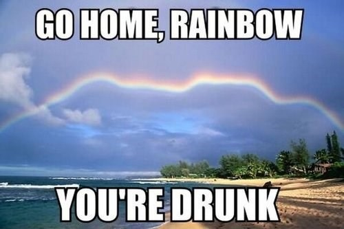 go home you're drunk,photography,rainbow dash