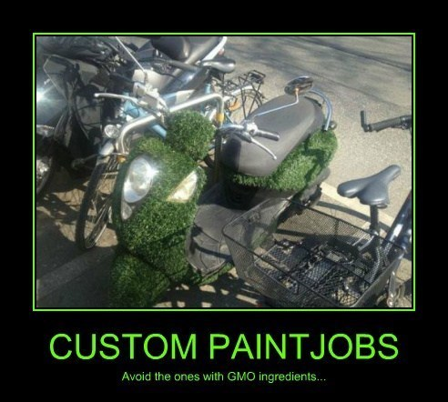 wtf plants - 8138506752
