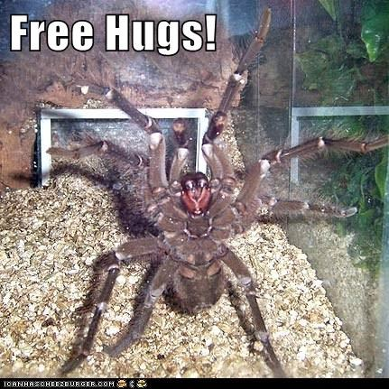 hugs,creepy,spider