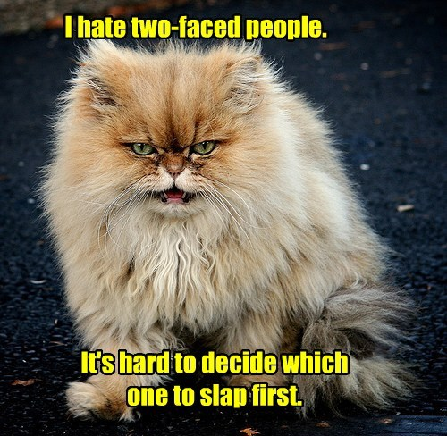 I hate two-faced people. It's hard to decide which one to slap first.