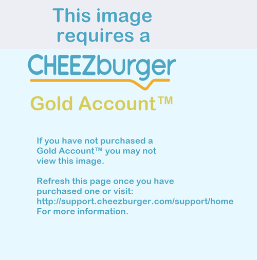cheezburger,cheezburger gold account