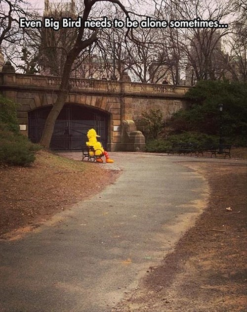 Sesame Street,big bird,lonely