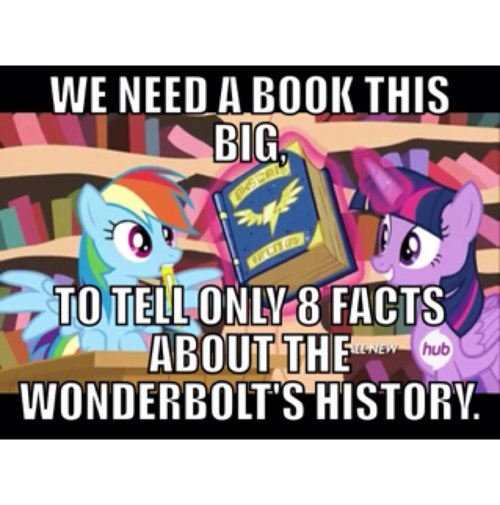 the wonderbolts,logic,rainbow dash