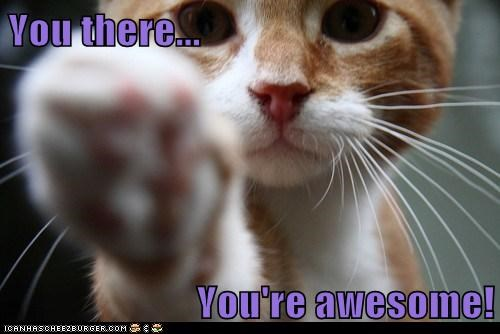Image result for you're awesome