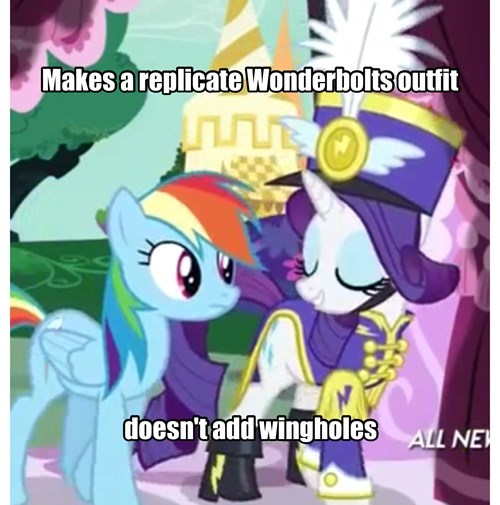 rarity rainbow dash the wonderbolts - 8142144512