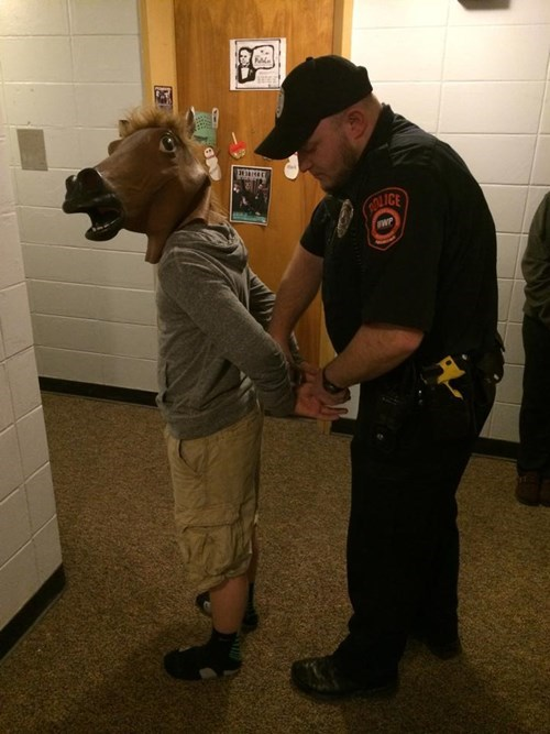 cops,horse masks,arrested