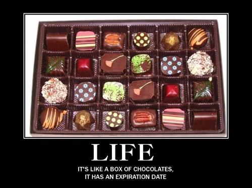 life chocolate - 8142350848