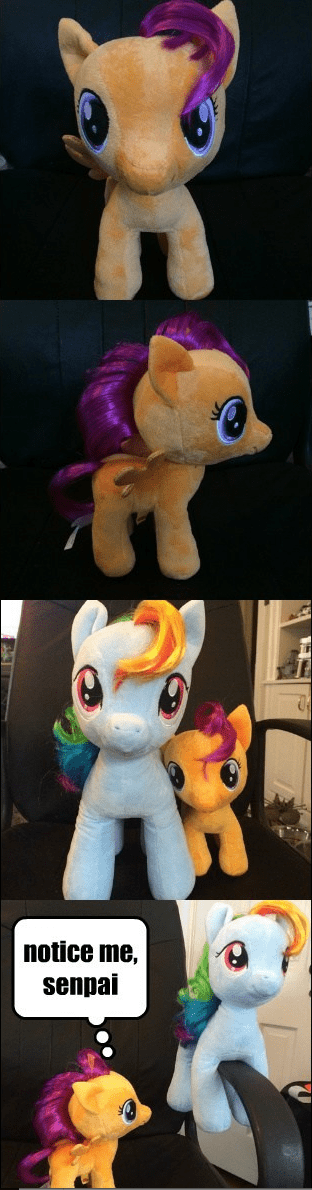 Plushie,Scootaloo,rainbow dash