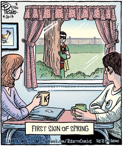 robin,spring,web comics