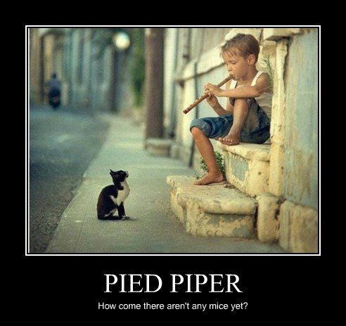 kids,pied piper,cute,mice,Cats