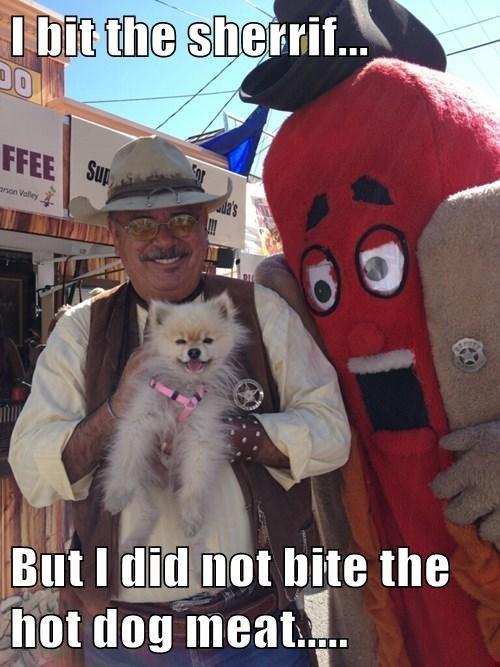 hotdog bob marley puns cute - 8142770176