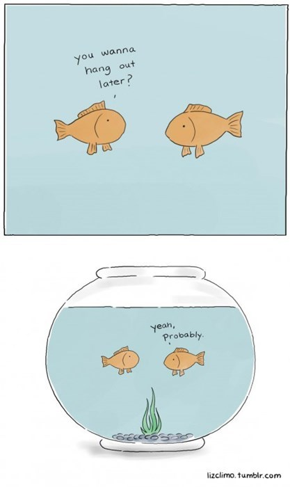 fish friends web comics - 8143337984
