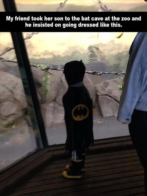 costume,batcave,batman,kids,parenting,zoo,g rated
