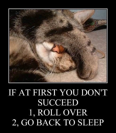 IF AT FIRST YOU DON'T SUCCEED 1, ROLL OVER 2, GO BACK TO SLEEP