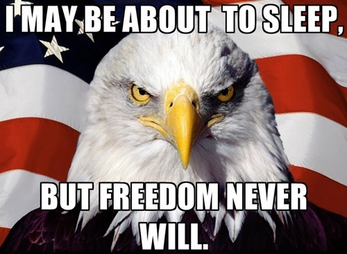 freedom sleep murica eagle - 8143801344