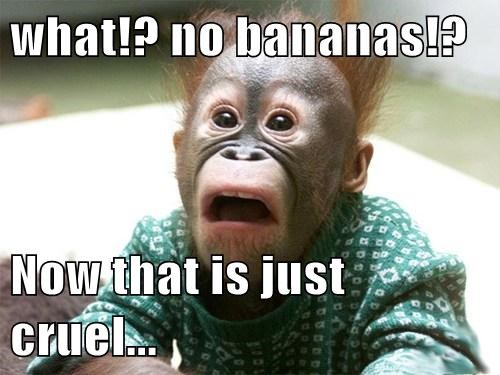 bananas apes shocked - 8144671232