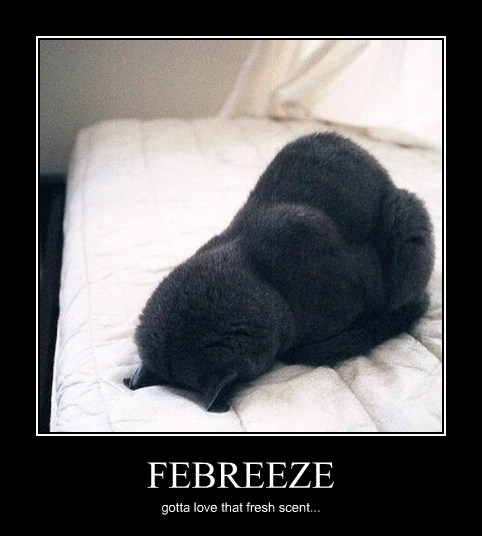 FEBREEZE gotta love that fresh scent...