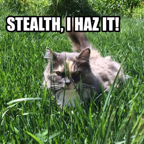easter stealth eggs cute Cats - 8146012160