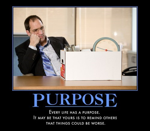 purpose - 8146699008