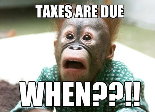 taxes apes shocked - 8147218176