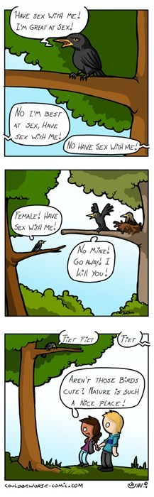 nature,mating,birds,sad but true,web comics