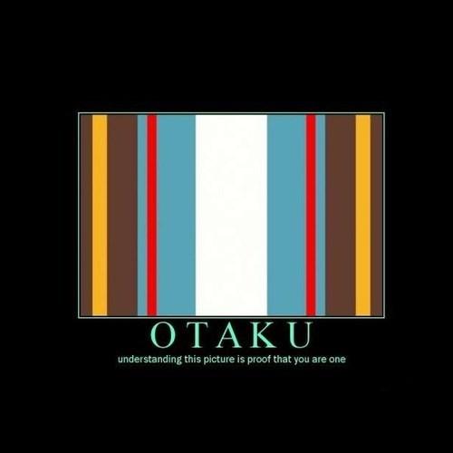 test funny otaku - 8147409920