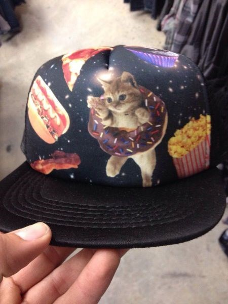 doughnuts,hot dog,donuts,poorly dressed,pizza,Popcorn,cupcakes,Cats,hat,bacon