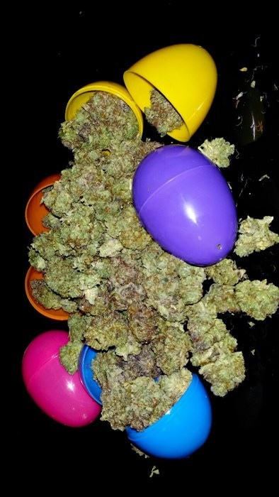 easter easter egg hunt wtf 420 drug stuff after 12