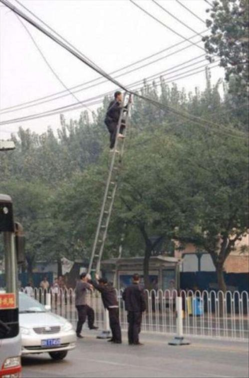 ladder,telephone wire,dangerous