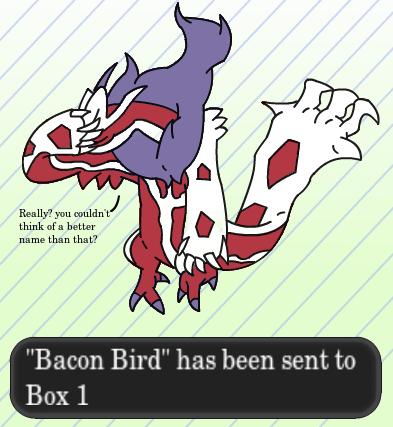 Pokémon shinies yveltal bacon bird - 8147752192