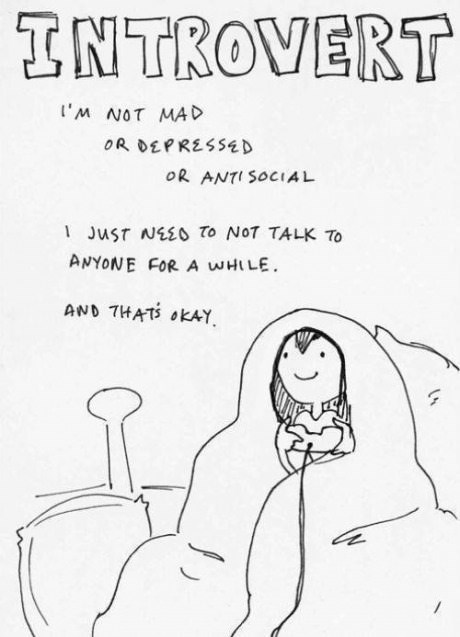 introverts,web comics