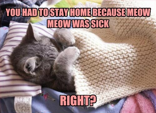 YOU HAD TO STAY HOME BECAUSE MEOW MEOW WAS SICK RIGHT?