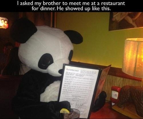 costume,panda