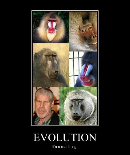 evolution Ron Perlman science funny - 8148756480