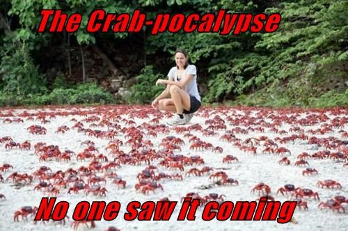 The Crab-pocalypse No one saw it coming