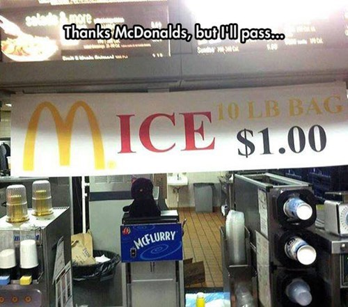McDonald's mice - 8149125632