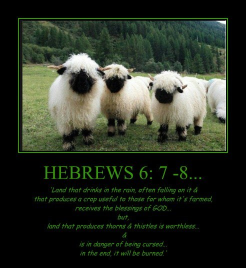 HEBREWS 6: 7 -8... 'Land that drinks in the rain, often falling on it & that produces a crop useful to those for whom it's farmed, receives the blessings of GOD... but, land that produces thorns & thistles is worthless... & is in danger of being cursed... in the end, it will be burned.'