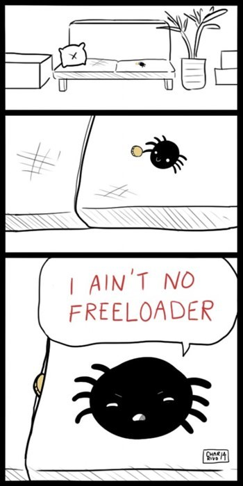 spiders couches thanks obama change web comics - 8150601984